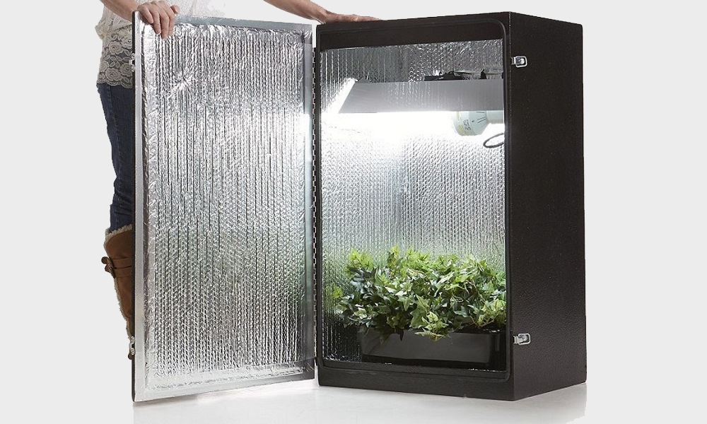 increase humidity in grow box