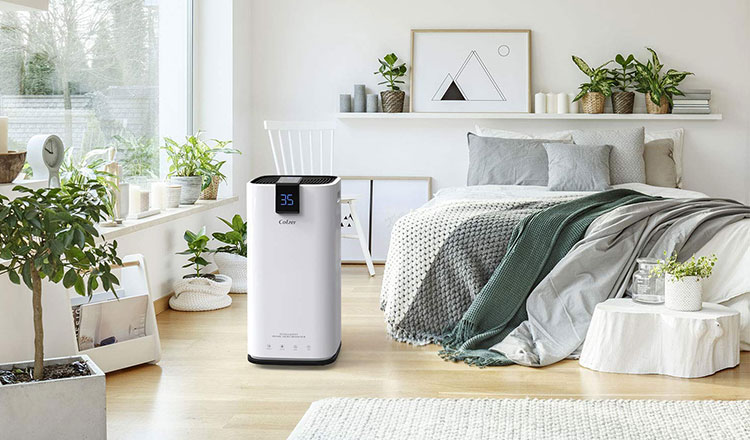 best dehumidifier for grow room