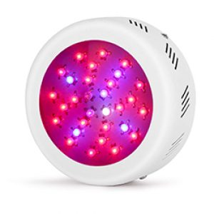 roledro led grow lights