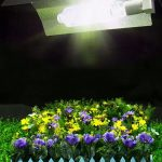 iPower grow light reviews