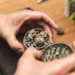 Best Weed Grinder For Extracting the Most from your Bud
